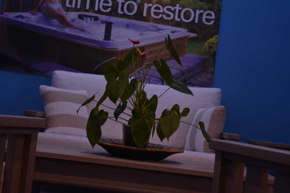 startford-plant